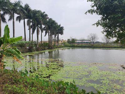 Bán 720m2, xã Hồng Vân, Thường Tín, Hà Nội.