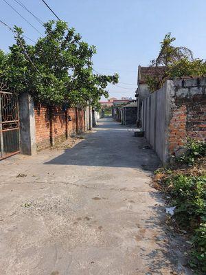 Bán lô đất 87m2 Xuân La,Thanh Sơn,Kiến Thụy–HP