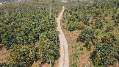 Đất đất nông nghiệp 51.000m2
