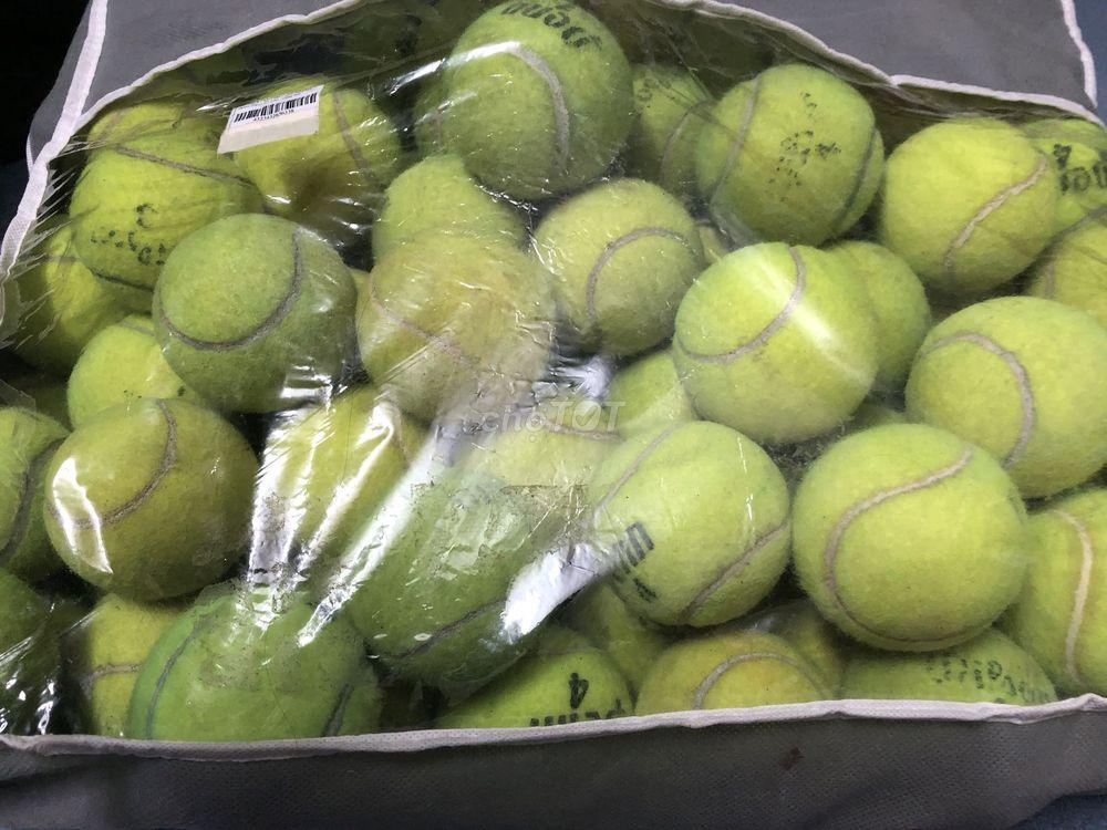 Banh tennis cũ bán sỉ