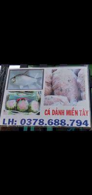 Chả cá dảnh niềm tây