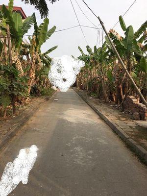 Bán lô đất ở gần Đường Máng và đường 208