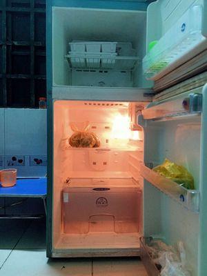 Tủ lạnh bao ngon
