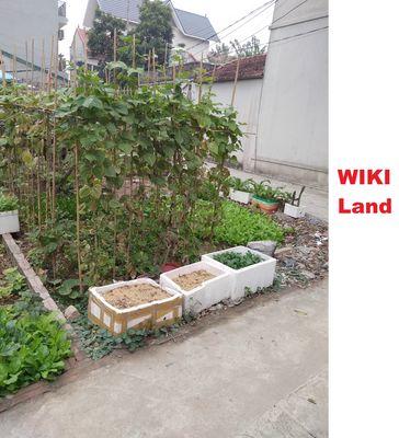 Đất Vân Nội 1 tỉ ngõ thông cạnh ủy ban xã Vân Nội