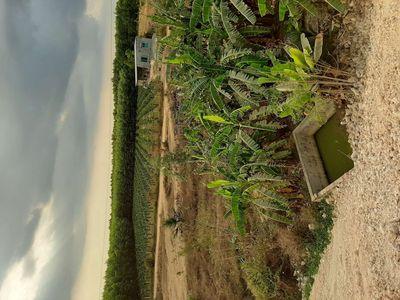 Đất chính chủ 5306m2 gần quốc lộ  xuân lộc đồngnai