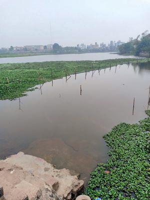 Bán đất đẹp gần hồ, Ql6 giá chỉ nhỉnh 300 triệu