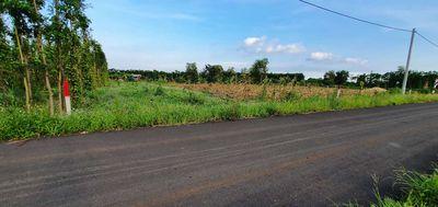 Đất xã Bình Trung Huyện Châu Đức 1.400m2 (30*46)