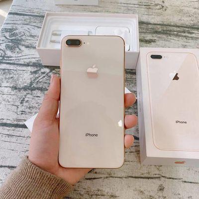 iPhone 8 Plus Vàng Quốc tế còn BH TGDĐ 5tháng