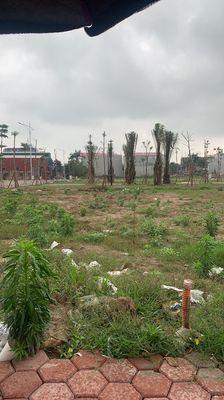Lô hướng Nam nhìn công viên dự án Dabaco
