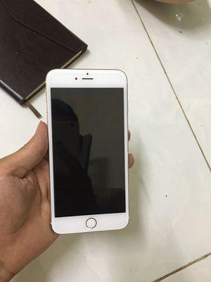 Apple iPhone 6 plus 16 GB vàng hồng