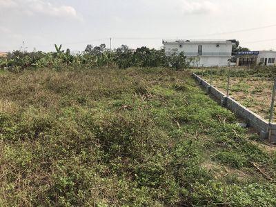 Đất sổ đỏ 110m2 tại Hòa Mạc, Duy Tiên giá tốt.
