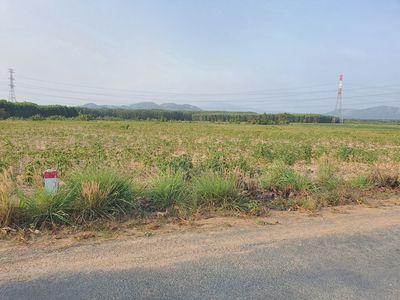 Đất 3 Ha đường số 10 Tân Phúc - Hàm Tân chính chủ