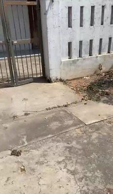 Đất tặng nhà Phan Thiết 100m² Đường Nhựa