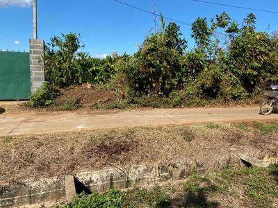 Bán 2,5 sào đất rẫy view cánh đồng Khánh Xuân