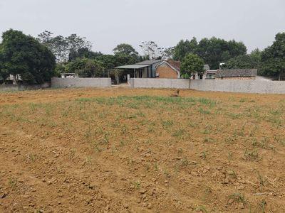 Đất thổ cư gần KCN cao Hòa Lạc