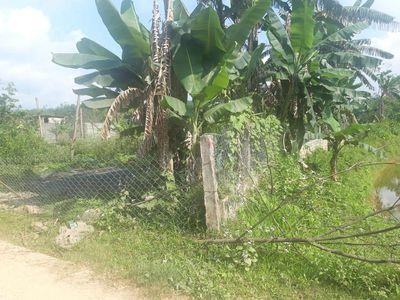 Đất vườn đường bê tông trên bà nà gần tái định cư