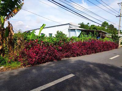 Đất vườn 1425m2, mặt tiền 18m Huyện Lộ Ngô Gia Tự