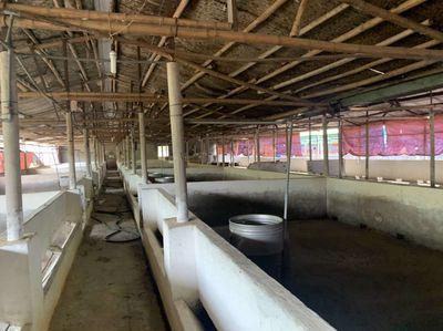 Bán trang trại 3 mặt tiền xã Vĩnh Tân , Vĩnh Cửu