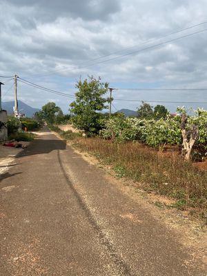 Đất Đào Duy Từ gần Phạm Hùng. 8x60. đường nhựa 8m