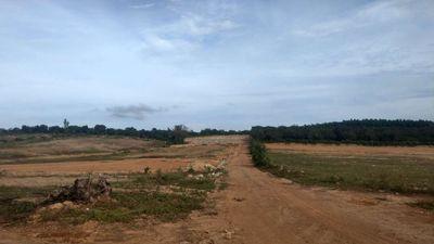 Đất CLN sổ riêng huyện Xuân Lộc 1.329m2 giá 460tr