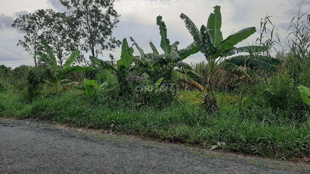Đất mặt tiền đường tỉnh 925 đoạn Phú Hữu