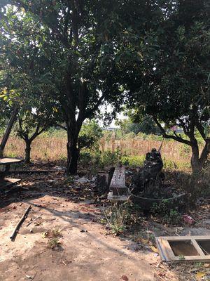 18x44m Thổ cư Đất Trung Tâm Xã Hoà Phú Giá Đầu Tư