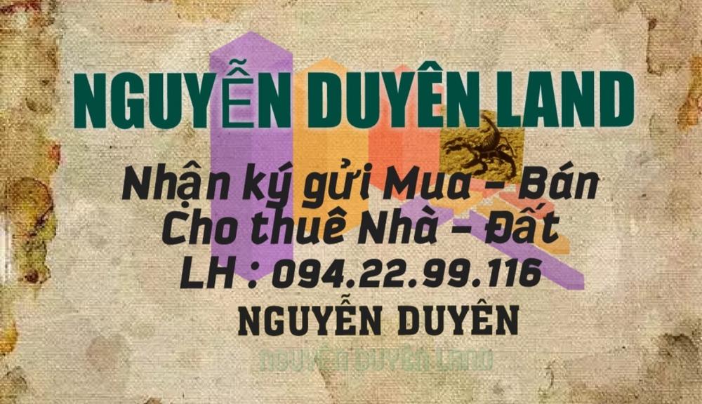 Nguyễn Duyên Land