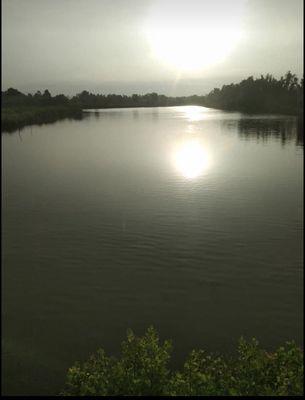 Đất Huyện Cái Nước 11.664m²