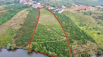 Bán 9500m2 đất giáp hồ tại Tà Đùng Đăk Som, thổ cư