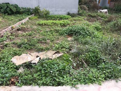 Cần bán lô đất 55,5m2 tại Thôn 6, Bắc Sơn