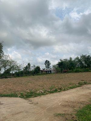 Đất Thôn Châu Sơn Điện Tiến giáp núi Bồ Bồ 350tr