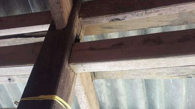 Bán nhà sàn gỗ hai tầng giá 500 tr ngay thành phố