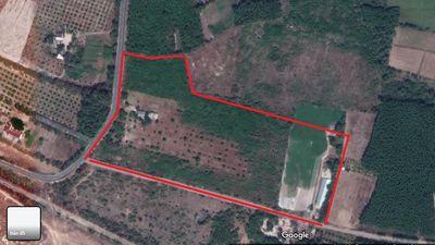 Đất trang trại núi Minh Đạm, Phước Hải 15000 m2