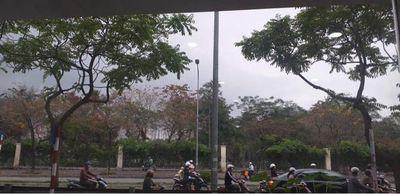 Bán nhà mặt phố Lê Duẩn, Đống Đa 39 m2 giá 4.5 tỷ
