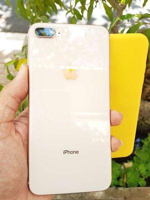 iPhone 8 plus 64 GB Gold zin keng nguyên áp suất