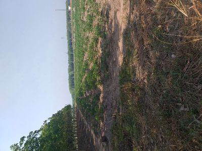 Đất chính chủ có sổ hồng 370m2, Chơn Thành