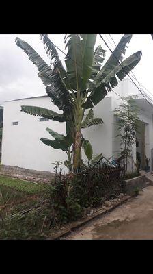 Nhà Vĩnh Hải gần chợ giá 1ty1