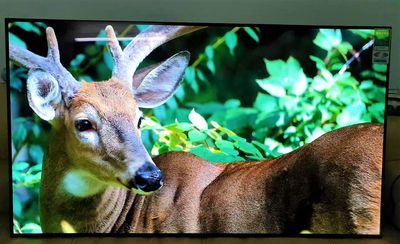 TV OLED LG 55C9PTA 55in 4K Dòng OLED C9 BH 06/2022