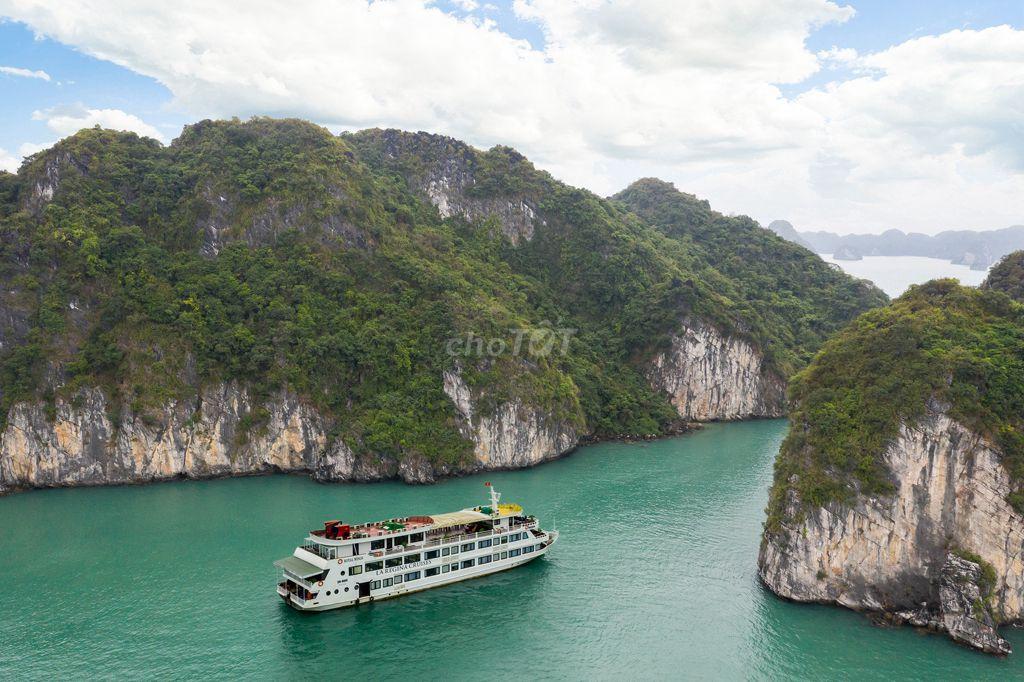 Tập đoàn du thuyền HạLong La Regina siêu giảm giá!