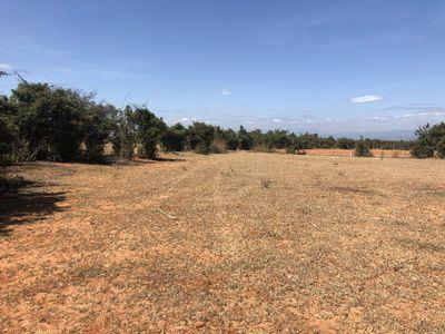 Bán lô đất nông nghiệp Bình Thuận giá rẻ gần các t