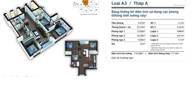Cần bán căn hộ chính chủ 4 ngủ tần 31