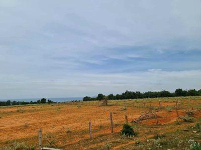 Bán đất nông nghiệp SHR 4807m2, đầu tư lợi nhuận.