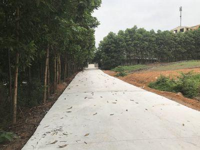 Bán đất mặt hồ khu Đá Bạc, Xuân Khanh, Sơn tây.