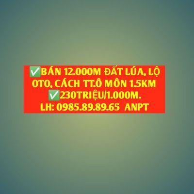 ⭐ BÁN 12.000M ĐẤT LÚA CÁCH TT.Q.Ô MÔN, CẦN THƠ.