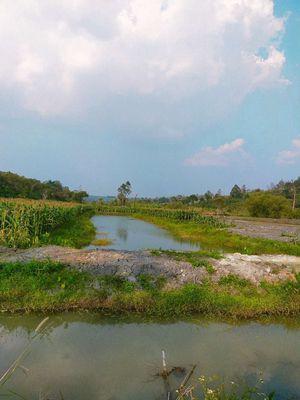 Đất Thị xã Gia Nghĩa 26.000m2