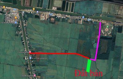 Đất ruộng, 3 vụ, cách tỉnh lộ 800m, giá 85tr