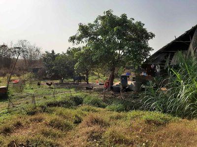 Đất vườn được lên thổ cư 14x30, tiện xây ở hoặc KD