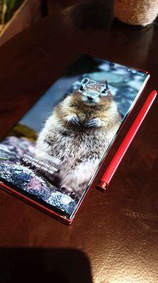 SamsungNote10 5G Đỏ may mắn 12gB Ram vân tay ok