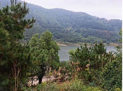 2500m2 đất sinh thái Hồ Đồng Đò Sóc Sơn chỉ 1.2ti