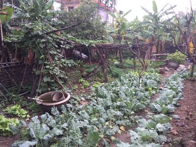 Bán lô đất đẹp làng Huê - Hoa Động -thuỷ nguyên
